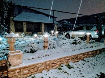 Ландшафтный декор зимой